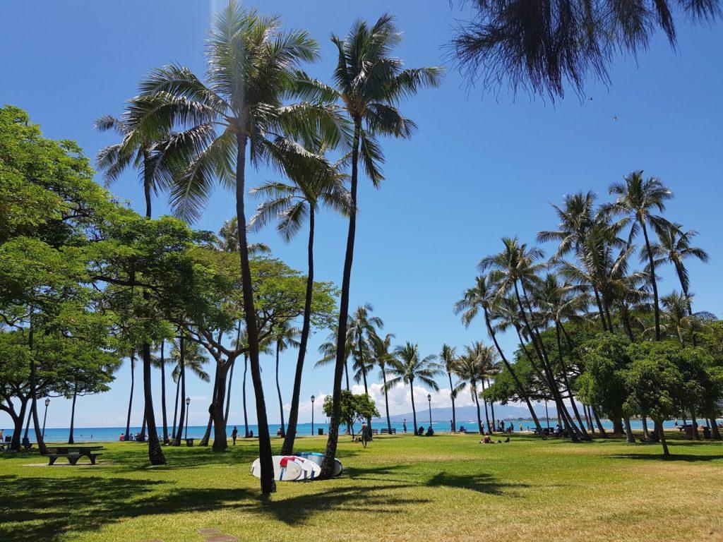Insel, Oahu, Hawaii, Waikiki, Honolulu, Waikiki Beach