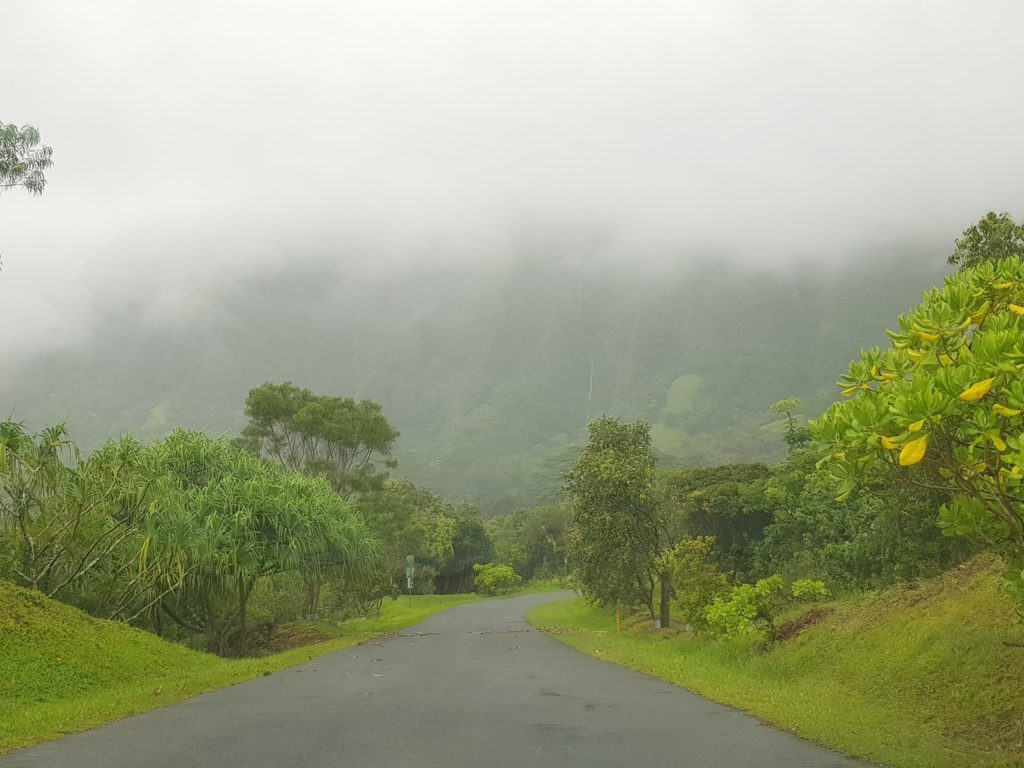 Insel, Oahu, Hawaii, Botanical Garden