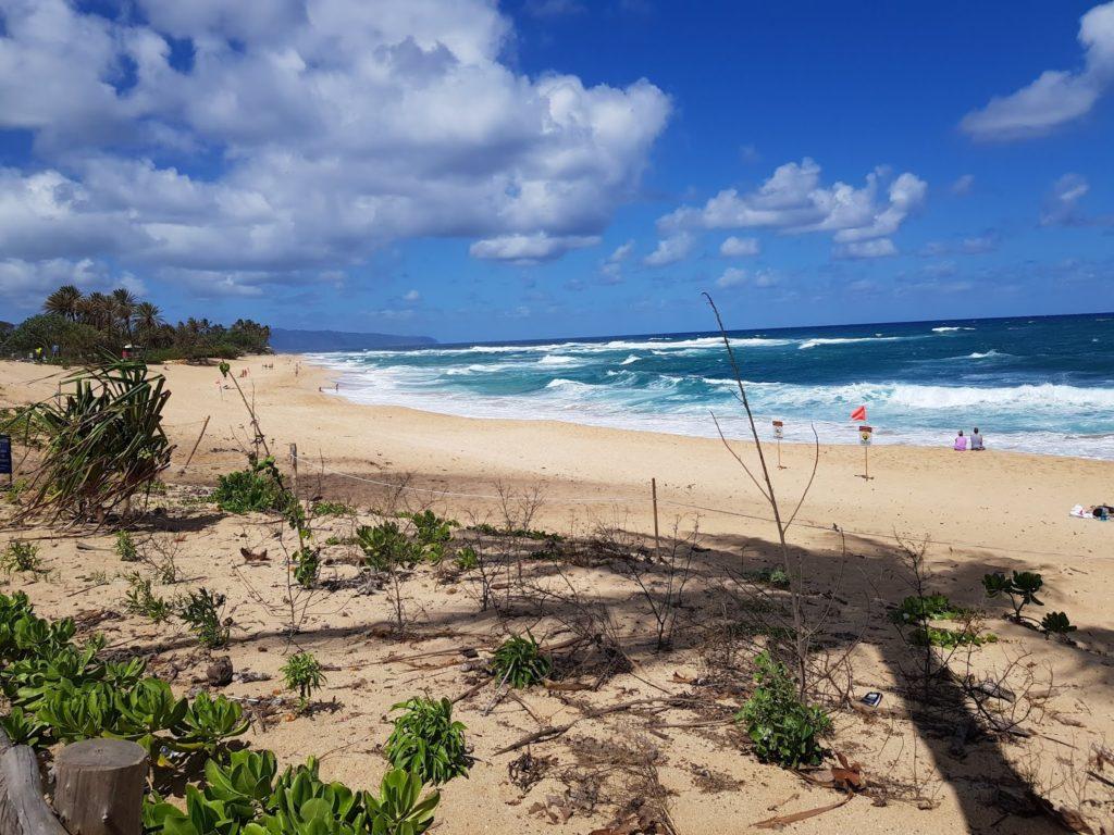 Insel, Oahu, Hawaii, Beach, Sunset Beach, North Shore