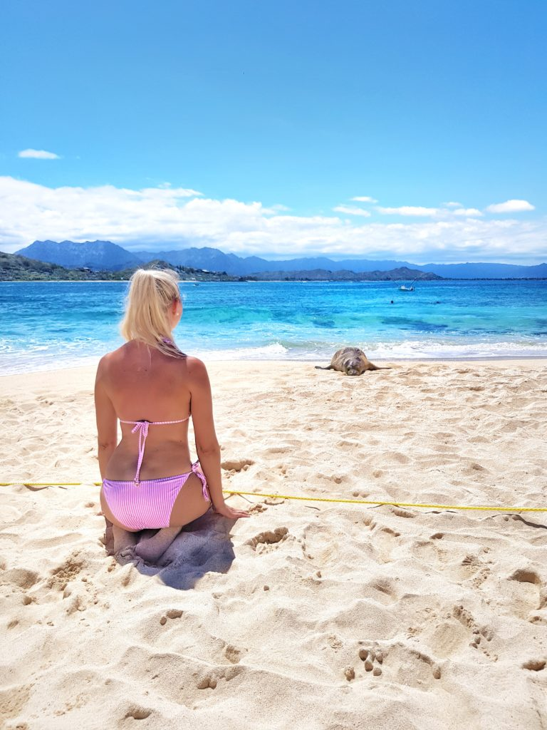 Insel, Oahu, Hawaii, Beach, Kailua, Mokulua Island
