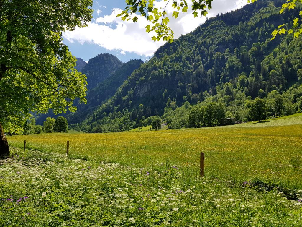Zell am See Kaprun, Salzburg, Österreich, Berge